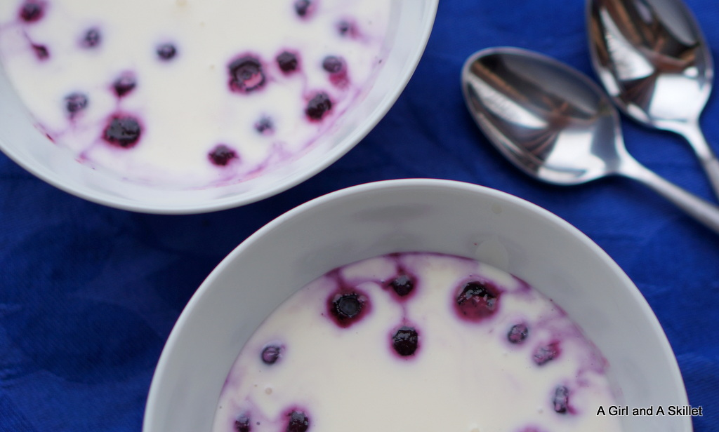 panna cotta, blueberries